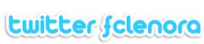 Twitter FC Lenora