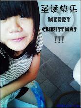~ 聖誕節快樂 ~