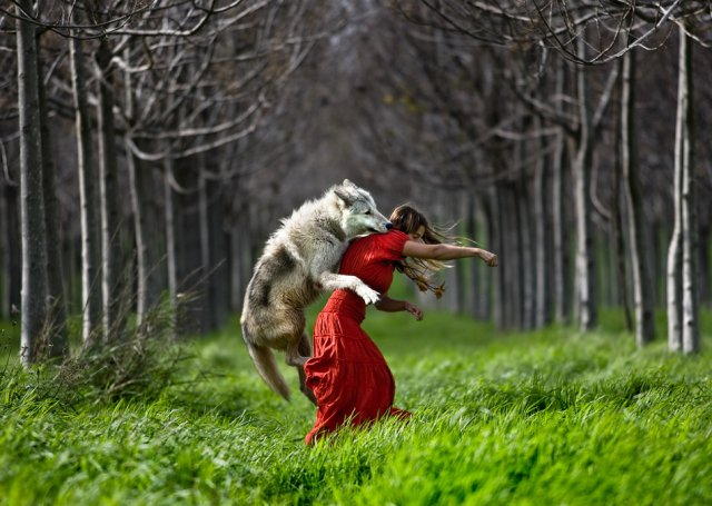 White Wolf : Women Who Run With the Wolves (Video)