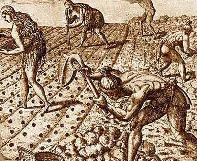 Early Agriculture in Mesopotamia http://fanaticcook.blogspot.com/2010/06/farming-life-of-drudgery-and-toil.html