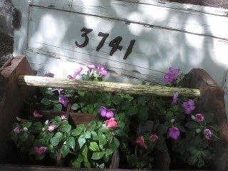 3741 Whipple Lane
