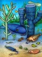 Cambriano cambrian