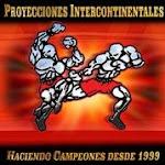 Proyecciones Intercontinentales