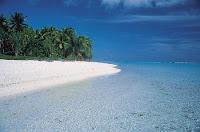 Tuamotu Beach Scene