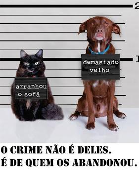 ABANDONAR ANIMAIS É CRIME!!!