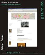 Primer premio en el concurso de blogs culturales convocado en 2009 por la Universidad de Alicante