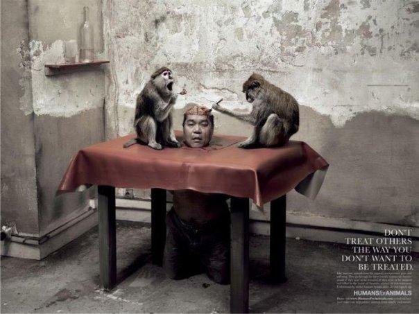 Makan Otak Monyet Hidup