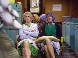 mrs. gorilla and mrs. non gorilla