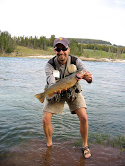 Big Yellowstone Cutthroat