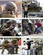 ALTO TOTAL A LA MASACRE EN GAZA