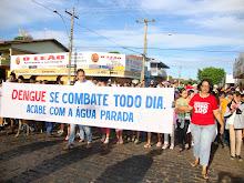 Campanha contra o mosquito da Dengue-2010.