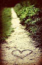 ¿Donde está el amor?