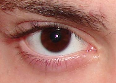 El Refugio El Color De Los Ojos