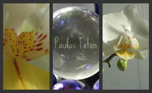 Paulas foton
