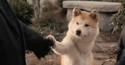 movie review hachinko But today i plucked up the courage and i saw the movie hachiko and eventually burst into tears i know dogs are animals, but they are also saints who came from heaven to fill our hearts with.