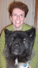Offering private in home training and behavior consultations in Mid-Coast Maine