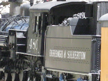 We took this train to Silverton from Durango, CO