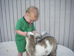 Nicholas and baby goat