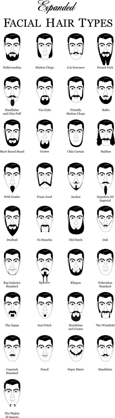 [beard.jpg]