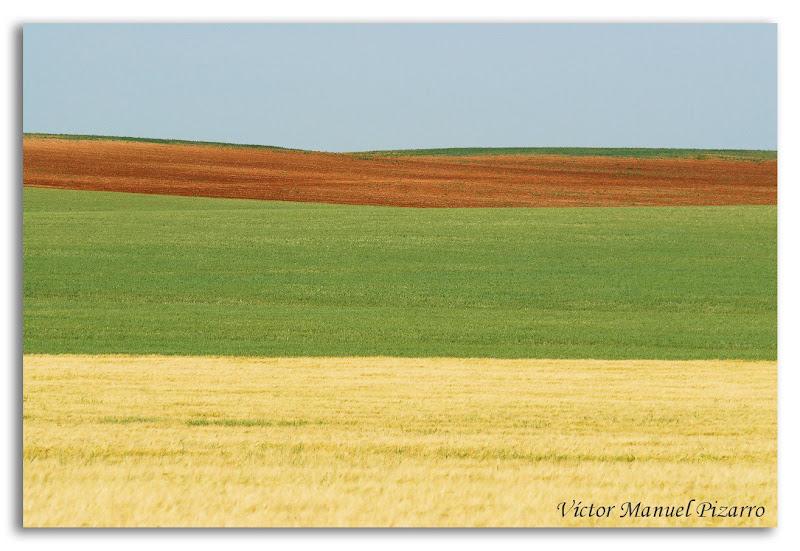 Horizontal: Paisaje Agrícola / Horizontal: Agricultural landscape ...