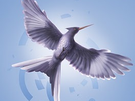 FYI: Cover of Book 3 of the Hunger Games series