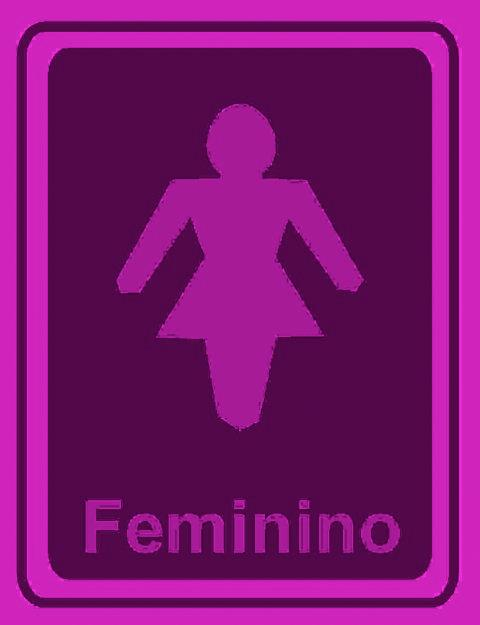 ` POLÊMICA PROJETO QUE AUTORIZA TRAVESTI A USAR BANHEIRO FEMININO ESTÁ PARA -> Banheiro Feminino Texto