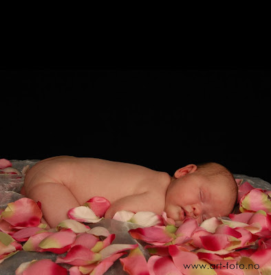 DSC 0110nett - Nyfødt