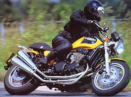 Thunderbird Sport 900
