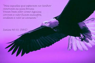 """""""Isaias"""