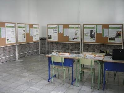 Aspecto de la Exposición sobre Darwin