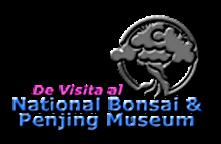 De Visita al National y Penjing Museum