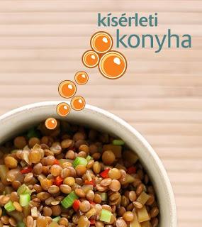 hegyi lencse chili paprika chilipaprika peperóni pepperoni aszalt mangó angolzeller szárzeller sárgabarackecet szójaszósz édes-savanyú lencse
