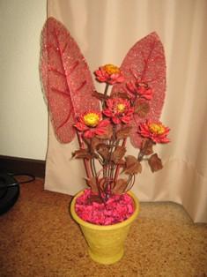 Flores a lembrar o Outono