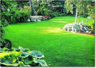 Paisajismo Dise O Y Construccion De Jardines