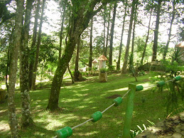 Capelinhas do Rosário