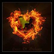 El amor no pasará jamás. Publicado por Mylene Wolf el amor es