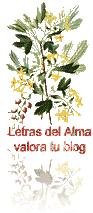 SILVANA-REGALO