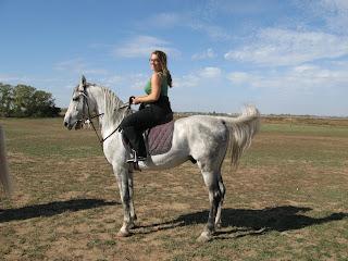 hest er best på måten