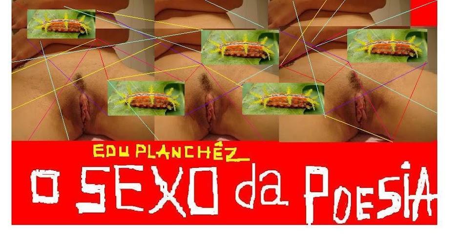 O SEXO DA POESIA