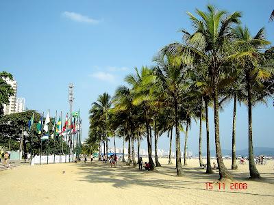 Palmeiras na faixa de areia da Praia do Gonzaga - Foto de Emilio Pechini em 15/11/2008