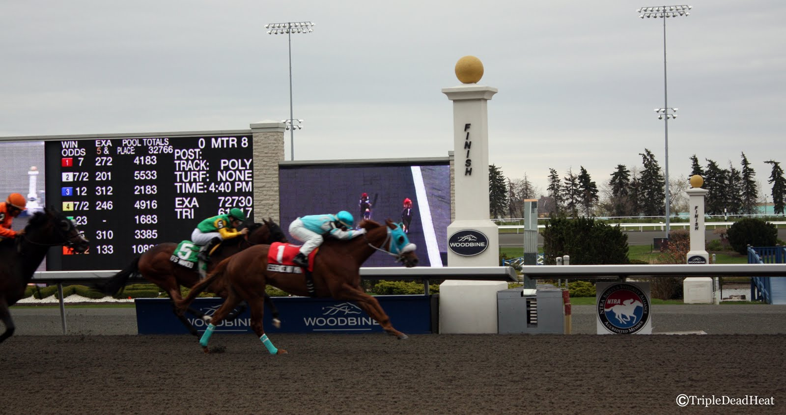 pros and cons of horse racing essay Now that mayor john tory is talking with canadian olympic committee president marcel aubut about a toronto bid for the 2024 games, it's a good time to examine the pros and cons.