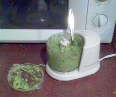 Pesto in a precious food processor.