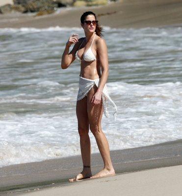 stephanie seymour bikini