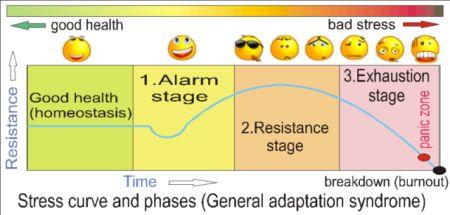 three phase model of trauma treatment pdf