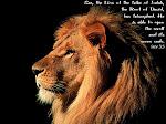Revelation 5:5 ...behold...
