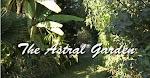 le jardin astral de Palmille
