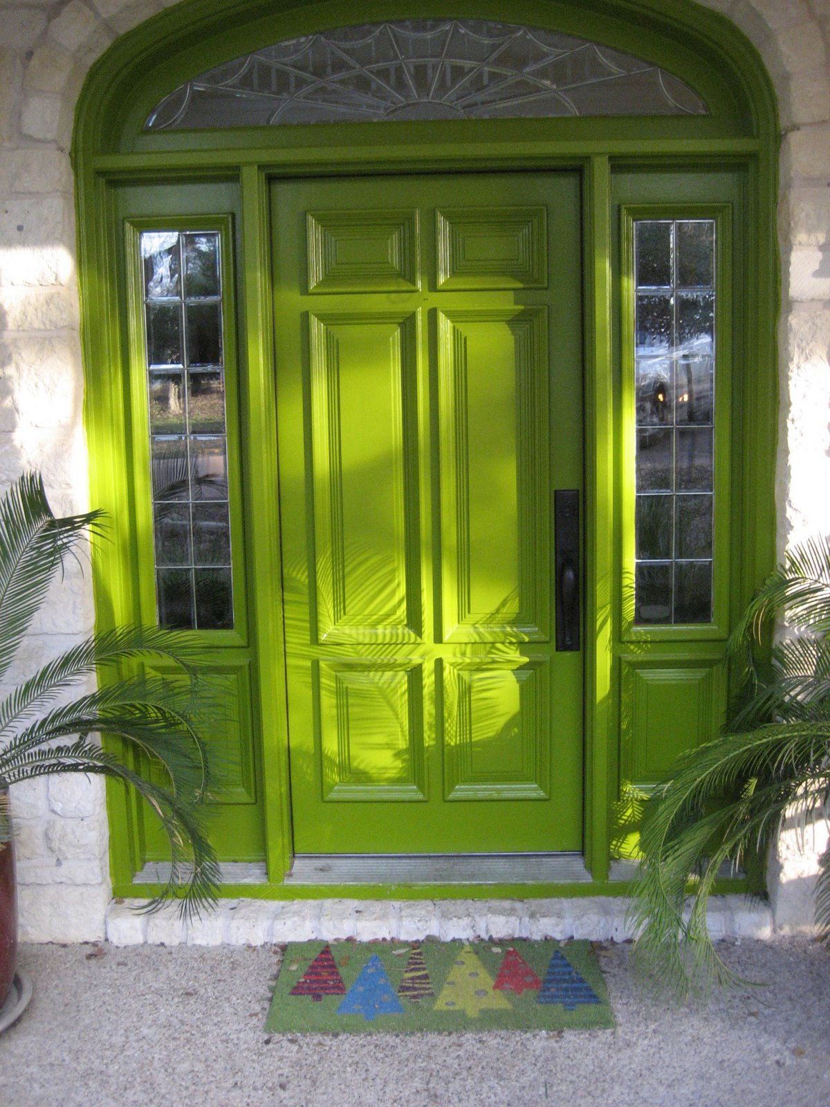 Few fancy things painted front doors