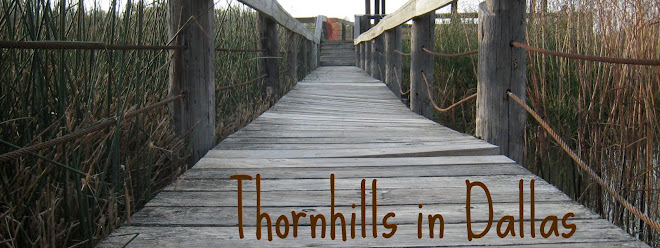 Thornhills in Dallas