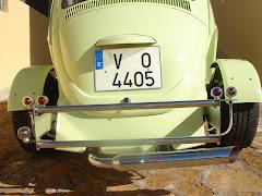Escarabajo17