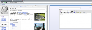 Dual View Plugin For Google Chrome